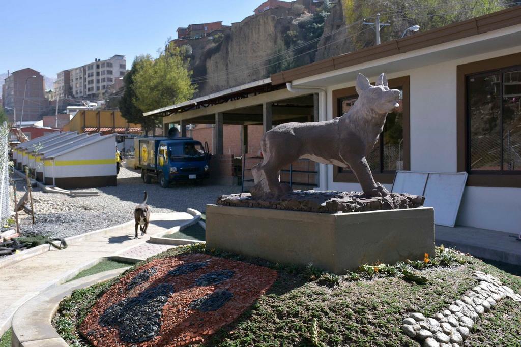 La casa de la mascota apuesta por sustituir la eutanasia por la adopci n urgentebo - La casa de la mascota ...
